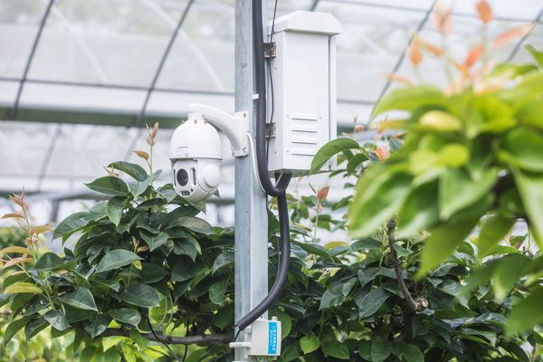 Technology adds fresh innovation to agriculture