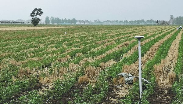 Cutting-edge technologies bring hope for farmers