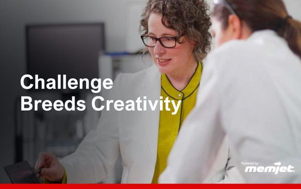 CHALLENGE BREEDS CREATIVITY