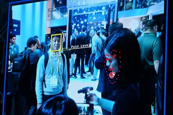Chinese court orders wildlife park to delete facial recognition data as privacy concerns grow among Chinese citizens