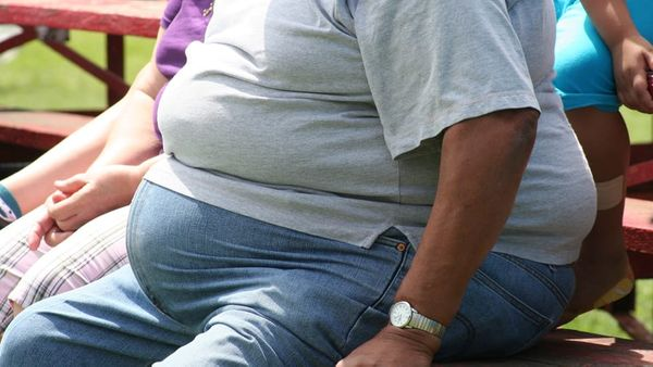 Czech scientists develop peptide with potential to treat obesity
