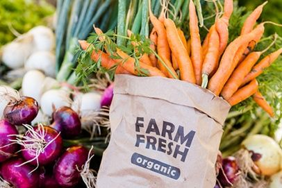 The 4 Levels Of Organic Food Certification